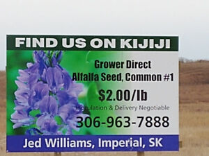 Alfalfa Seed, Grower Direct