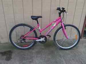 GIRLS 21 SPEED TRIUMPH MOUNTAIN BIKE $25