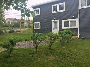 Bright 1 Bedroom Above Ground Apartment (Kelligews)