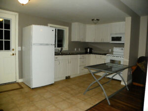 Renovated 2 Storey 2 Bedroom Apartment for Rent in Welland