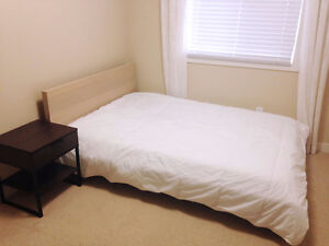 Room with own bathroom, prference female professional or student
