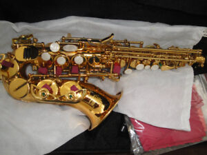 ALTHORN SOPRANO SAXOPHONE AND PINK ALTO SAXOPHONE BRANDNEW  $400