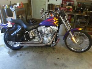 2005 Softail for Sale