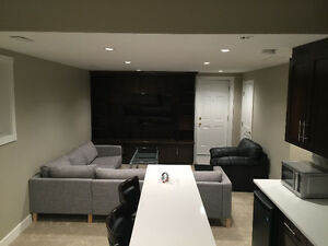 Brand new basement sw area