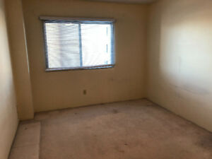 Apartment for rent (Females only)