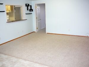 1 Bdrm Bsmnt Suite for Rent in Stony Plain