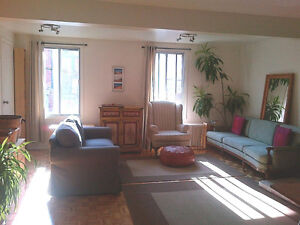 Plateau - Furnished apt. with backyard - October-May