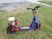 22 cc gas scooter for trade
