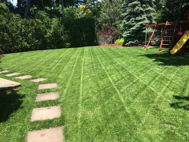 Weekly Lawn Care In Etobicoke FREE QUOTES! | Insulation | City of ...
