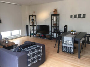 Penthouse apartment in the heart of downtown 1st month free!
