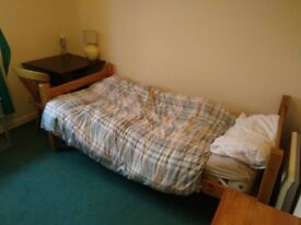 Single room available in March