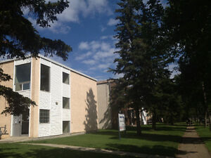 1 BD ADULT apartment ONE block from NAIT -11916-105 st