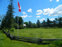 Horse Boarding Stable Almonte