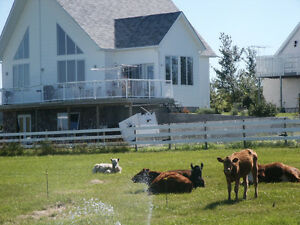 Acreage for Sale - size options starting at 460 K