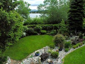 Serenity on Mill Lake