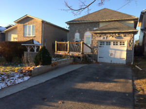 ** Rent Today - Full House in Courtice / Oshawa / Clarington**