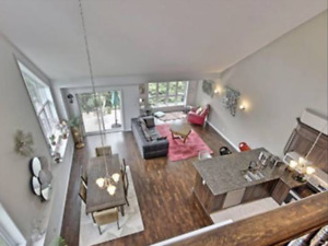 A luxurious condo/loft on Ottawa river - reduced and urgent