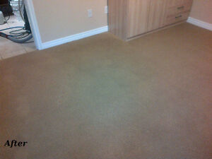 Winter Special - Free Carpet Cleaning Cambridge Kitchener Area image 7
