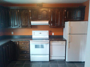 3 bedroom apartment for rent in clarenville