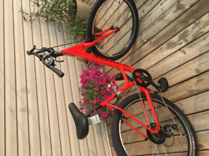 Brand New beautiful cruiser bike for sale!