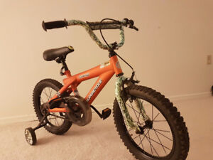 "16"" KIDS BIKE (Supercycle Camo)"
