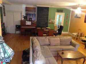 Beautiful, spacious apartment with free room in the Plateau