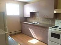 Large SK 1 Bedroom Apartment for Rent