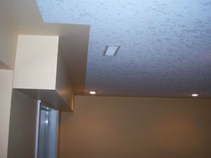 Ceiling texturing and repair