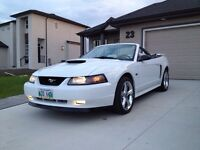 2003 Mustang GT Convertible - only 23,500kms
