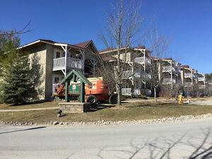 Demolition and Deconstruction Services - 1-866-449-5887 Kingston Kingston Area image 7