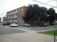 2br - Empty 4 1/2 For rent (Lachine)