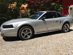 2003 Ford Mustang Convertable Coupe (2 door)