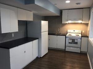 walk-out basement suite for rent Edmonton Edmonton Area image 6