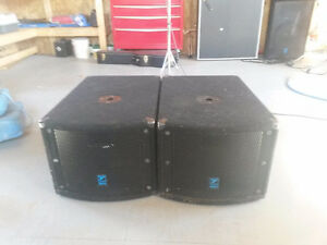 2 Elite Series Powered Subwoofer - 10 inch Woofer - 200 Watts