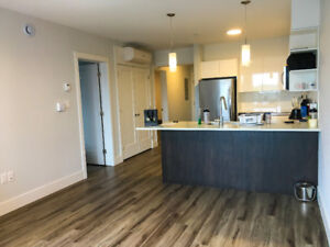Brand new, urban apartment unit 1 Bdrm + Den available for lease