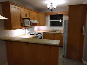 3 bed, 2.5 bath, 1500 all included St. John's Newfoundland image 6