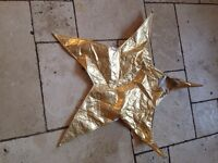 Nativity star costume