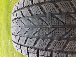 205 55 16 Toyo Observe winter tires (x2)