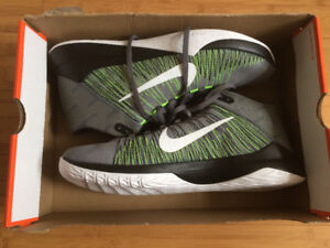 BNIB Nike Zoom Ascention Basketball Shoes