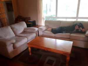 Living room furniture set from clean bug free home