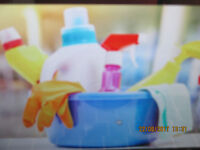 cleaning your house  Good job