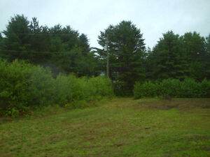 Waterfront Lot Ready for your Retirement Dream Home or Cottage Kitchener / Waterloo Kitchener Area image 6