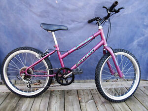 "mountain bike (falcon). tire size 20"", 5 speed ."
