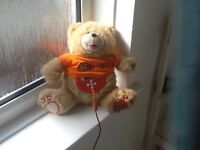 I teddy for sale