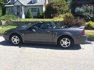 2004 Ford Mustang Convertible - Meticulous