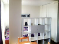 $820 Beautiful 2 1/2 apartment (lease transfer) Available june 1