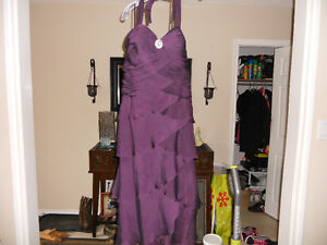 Beautiful Egg Plant Colored Gown