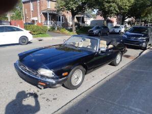 Jaguar xjs convertible V12 1991