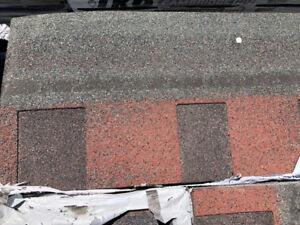 Pacific Rim Asphalt Shingles- $18 per bundle