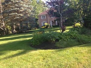 lawn  aeration London Ontario image 7